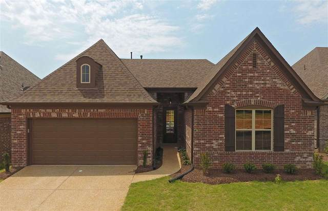 4390 Dockery Dr, Olive Branch, MS 38654 (#10078501) :: The Melissa Thompson Team