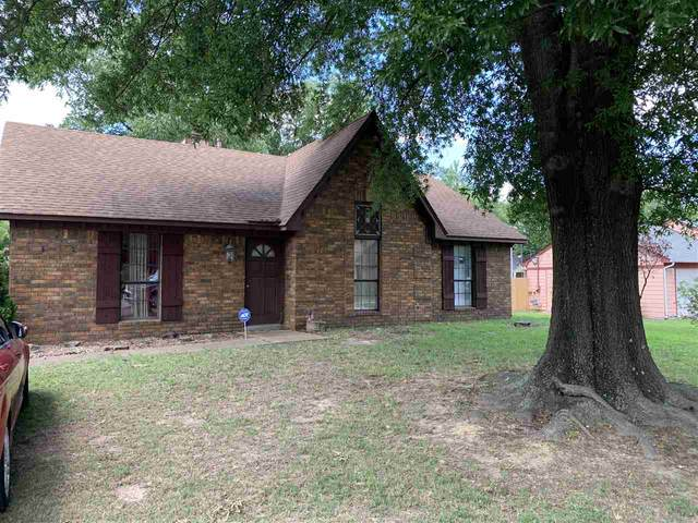 5952 Wedgewood Cv, Memphis, TN 38141 (#10078851) :: All Stars Realty