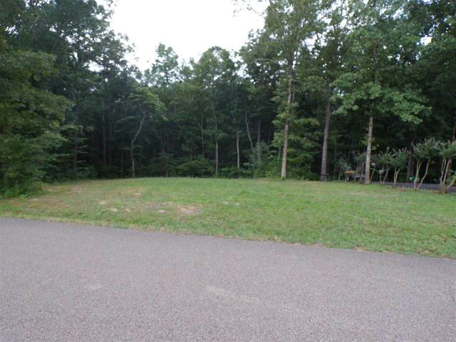 Lakeshore Ln, Counce, TN 38326 (#10079580) :: Area C. Mays | KAIZEN Realty