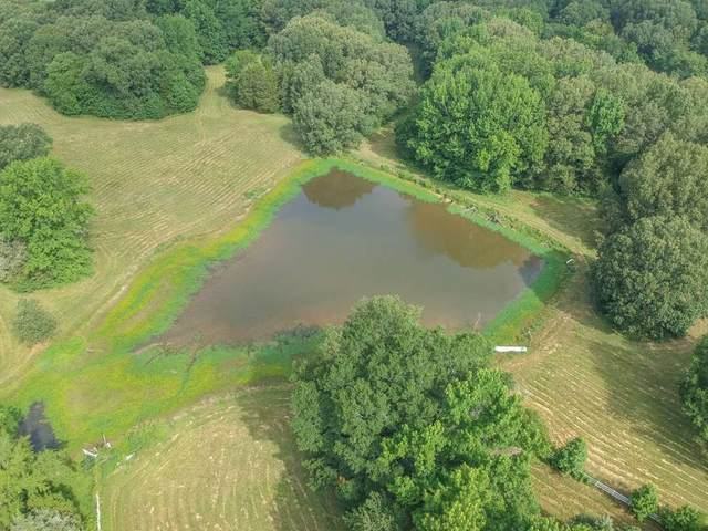 19255 Hwy 196 Hwy, Unincorporated, TN 38002 (#10079717) :: Bryan Realty Group