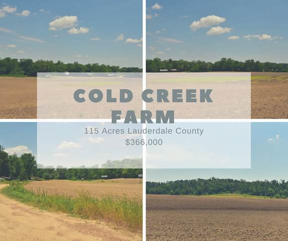 Cold Creek Rd, Henning, TN 38041 (#10079719) :: All Stars Realty