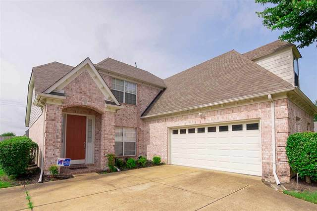 10443 Ashboro Dr, Collierville, TN 38017 (#10079790) :: J Hunter Realty