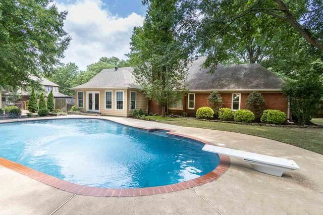 3583 Neyland Cv, Collierville, TN 38017 (#10079893) :: J Hunter Realty