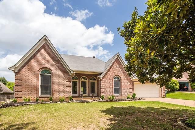 8688 Herring Cv, Memphis, TN 38018 (#10079899) :: RE/MAX Real Estate Experts