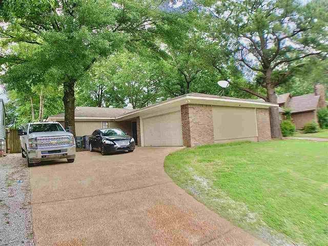 6034 Whisper Valley Dr, Memphis, TN 38141 (#10079967) :: J Hunter Realty