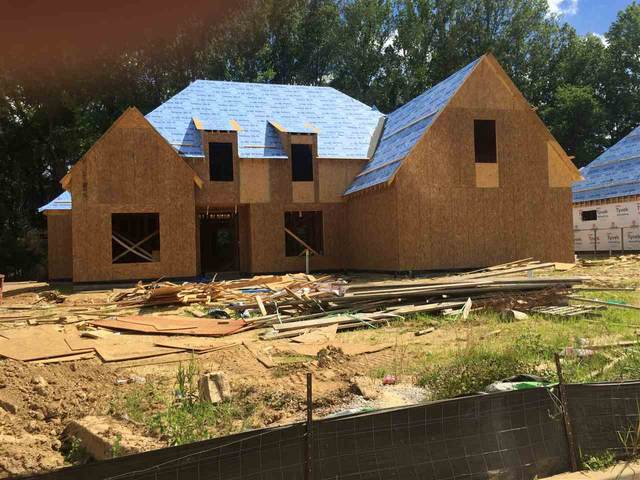 10487 Riley River Rd, Lakeland, TN 38002 (#10080058) :: RE/MAX Real Estate Experts