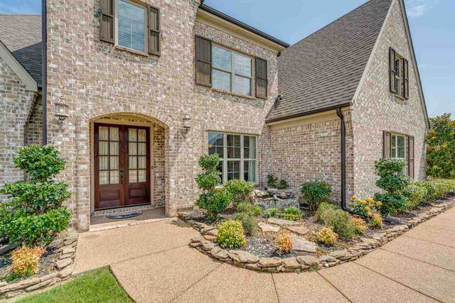 568 Catamount St, Collierville, TN 38017 (#10080389) :: RE/MAX Real Estate Experts