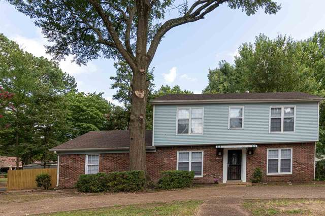 5817 Knight Arnold Rd, Memphis, TN 38115 (#10080456) :: The Wallace Group - RE/MAX On Point