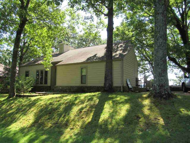 50 Wildfern Ln, Counce, TN 38326 (#10080512) :: RE/MAX Real Estate Experts