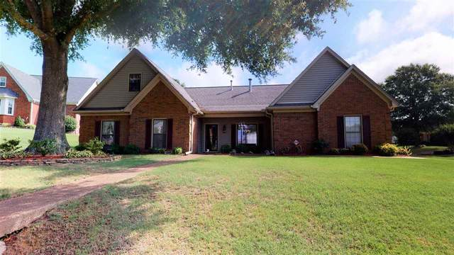8860 Patricia Ellen Cv, Bartlett, TN 38133 (#10080562) :: RE/MAX Real Estate Experts