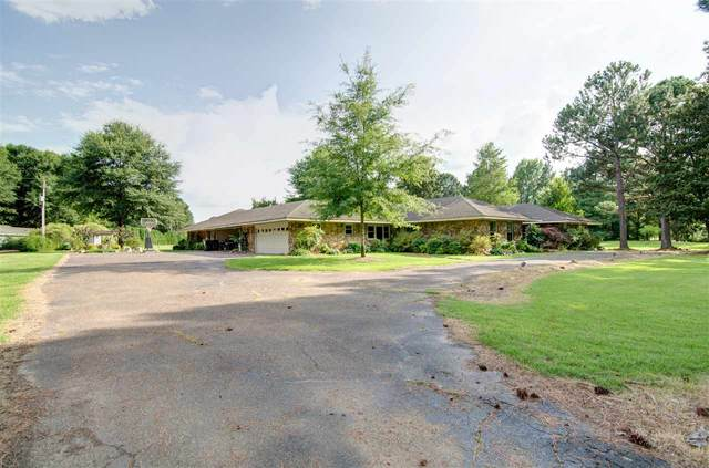 11429 Sycamore Farms Rd, Collierville, TN 38017 (#10080705) :: J Hunter Realty