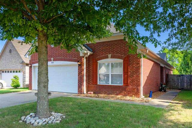9852 White Poplar Dr, Olive Branch, MS 38654 (#10080836) :: RE/MAX Real Estate Experts