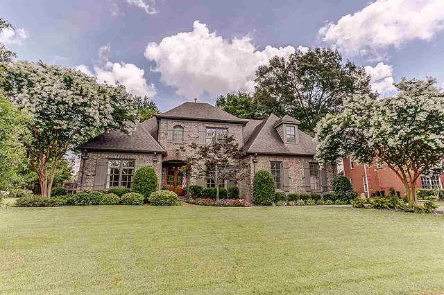 146 Ivy Brook Cv, Collierville, TN 38017 (#10080900) :: Bryan Realty Group