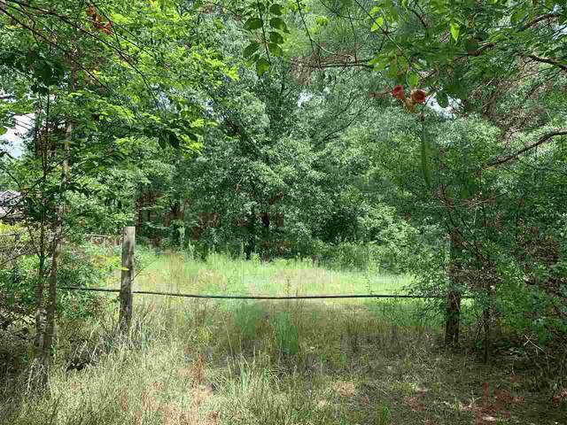 0 Woodview Rd, Byhalia, MS 38611 (#10081090) :: Bryan Realty Group