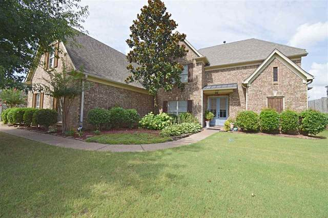 5503 Southern Winds Dr, Arlington, TN 38002 (#10081669) :: All Stars Realty
