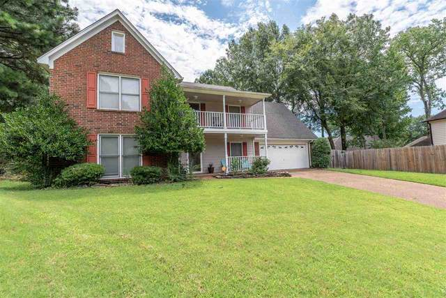 2704 Cedar Grove Cv, Memphis, TN 38016 (#10081844) :: The Melissa Thompson Team