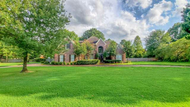 9511 Wolf River Blvd, Germantown, TN 38139 (#10082051) :: Bryan Realty Group