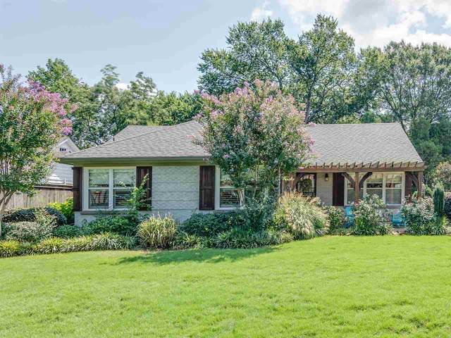 3500 Walnut Grove Rd, Memphis, TN 38111 (#10082071) :: All Stars Realty