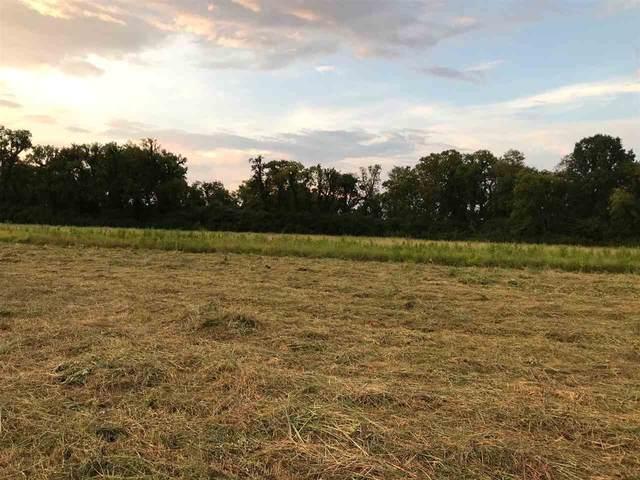 131 Bandit Way, Savannah, TN 38372 (#10082093) :: RE/MAX Real Estate Experts
