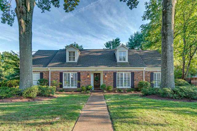 6797 River Birch Rd, Memphis, TN 38119 (#10082243) :: RE/MAX Real Estate Experts