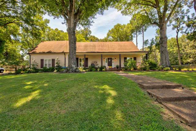 697 Winford Dr, Collierville, TN 38017 (#10082328) :: Bryan Realty Group
