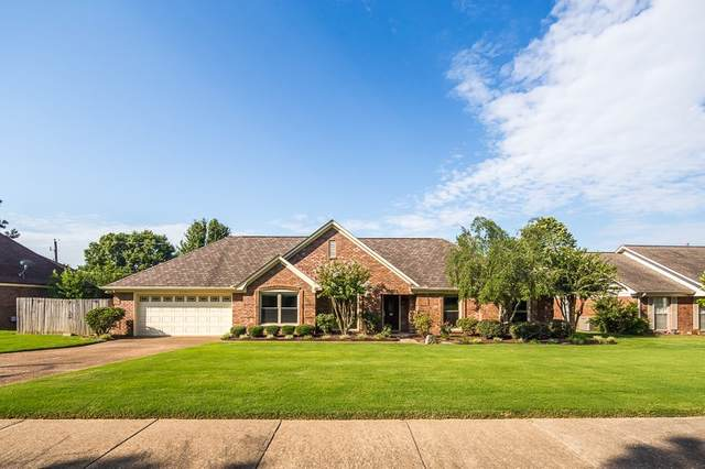8315 Chimneyrock Blvd, Memphis, TN 38016 (#10082360) :: Bryan Realty Group