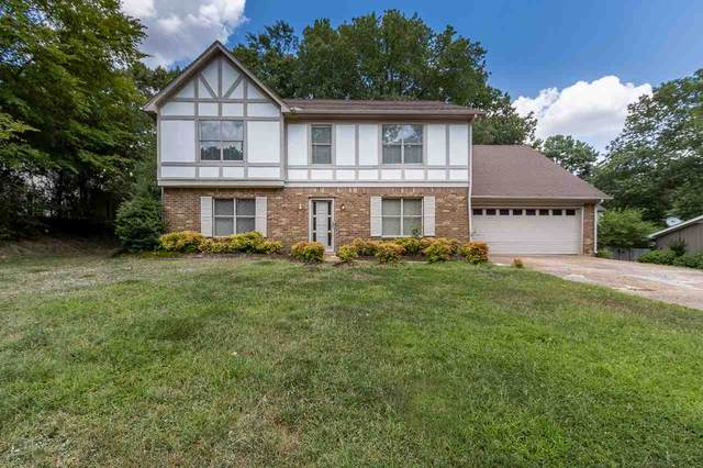 8324 Chippingham Dr, Memphis, TN 38016 (MLS #10082566) :: The Justin Lance Team of Keller Williams Realty