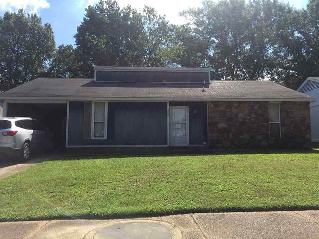 4282 Cary Hill Dr, Memphis, TN 38141 (#10082880) :: The Wallace Group - RE/MAX On Point