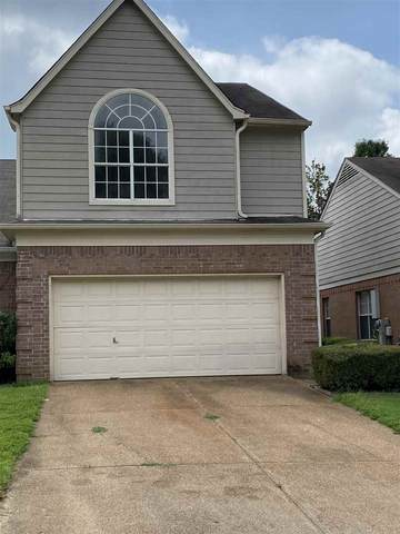6651 Whitten Pine Dr, Memphis, TN 38134 (#10082918) :: Bryan Realty Group