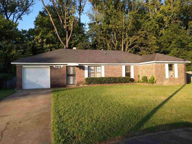 3808 Walsingham Cv, Memphis, TN 38128 (#10083531) :: The Wallace Group - RE/MAX On Point