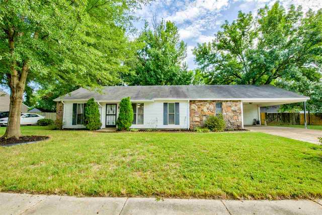 7235 Rose Trail Dr, Memphis, TN 38133 (#10083727) :: Bryan Realty Group