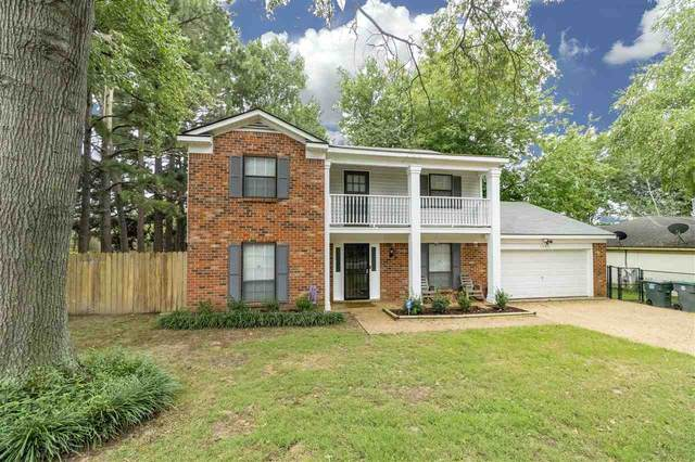 6335 Solway Dr, Memphis, TN 38119 (#10083901) :: Bryan Realty Group