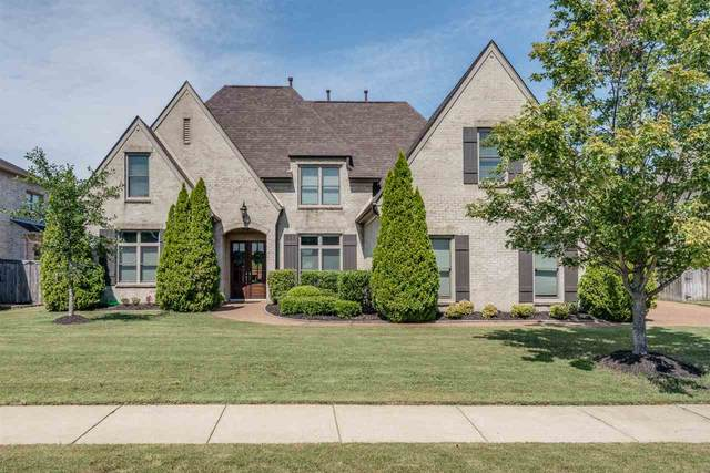 1763 Cypress Springs Ln, Collierville, TN 38017 (#10083918) :: Bryan Realty Group