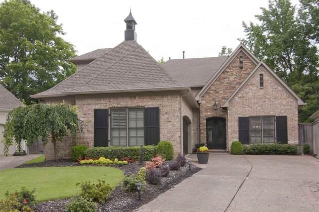 509 Princeton Forest Cv, Memphis, TN 38117 (#10084124) :: Bryan Realty Group