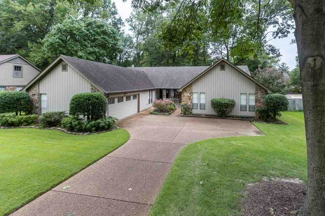 2241 Windy Oaks Dr, Germantown, TN 38139 (#10084388) :: The Dream Team