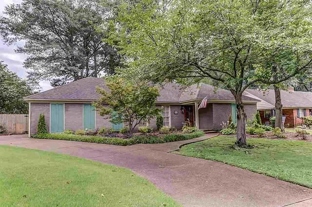 5383 Chickasaw Rd, Memphis, TN 38120 (#10084504) :: Bryan Realty Group
