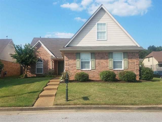 10162 Evening Hill Cv, Memphis, TN 38016 (#10084576) :: Bryan Realty Group