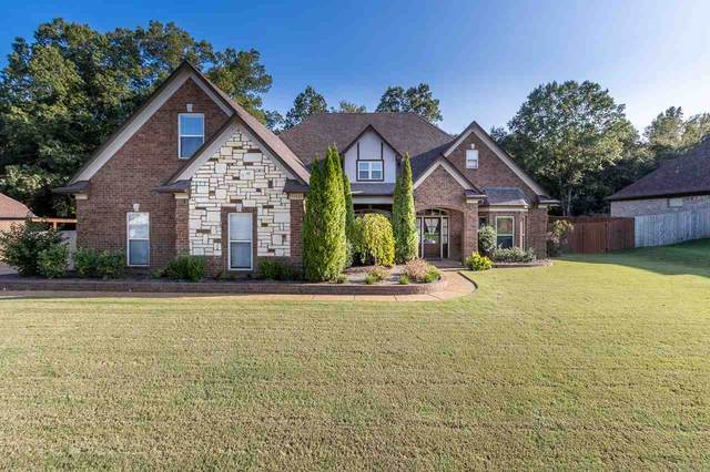 14401 Chapel Ridge Trl, Olive Branch, MS 38654 (#10084775) :: Bryan Realty Group