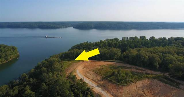 LOT 3 Rivertrace Drive Dr, Iuka, MS 38852 (MLS #10084778) :: The Justin Lance Team of Keller Williams Realty