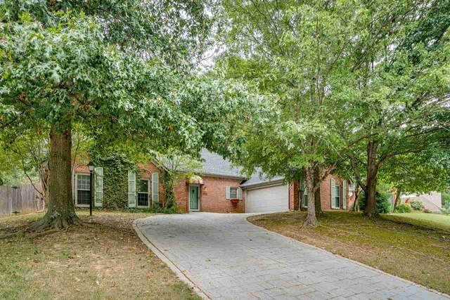 1565 Fox Trace Dr, Memphis, TN 38016 (#10084962) :: Bryan Realty Group
