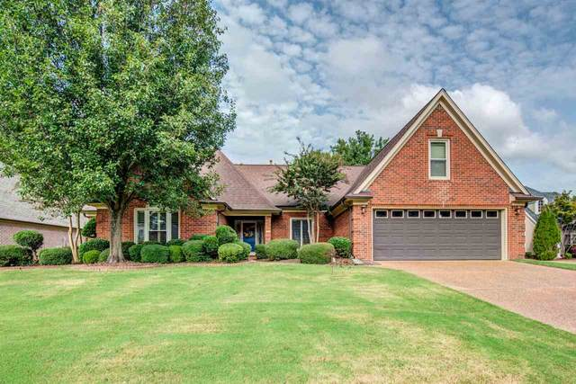 8855 Toth Cv, Memphis, TN 38016 (#10085038) :: The Wallace Group - RE/MAX On Point
