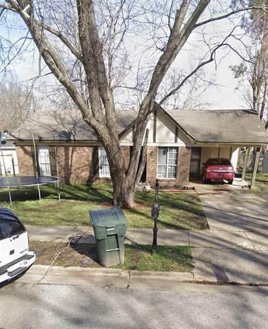 4678 Deep Brook Dr, Memphis, TN 38128 (#10085504) :: Bryan Realty Group
