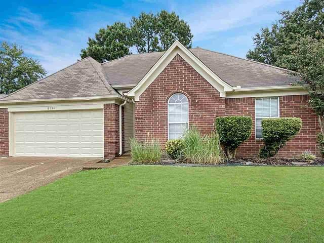 8136 Country Mill Cv, Memphis, TN 38016 (#10085631) :: The Dream Team
