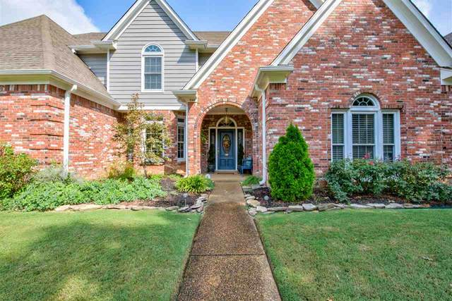 344 Revell Cv, Collierville, TN 38017 (#10085642) :: All Stars Realty