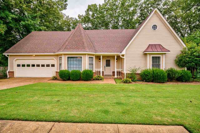 293 Great Falls Dr, Collierville, TN 38017 (#10085670) :: Bryan Realty Group
