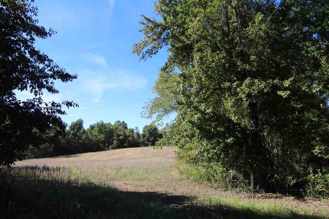 LOT 9 Dolan Rd, Unicorp/Drummonds, TN 38023 (#10085855) :: Bryan Realty Group