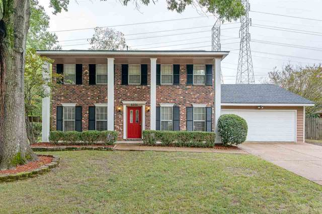 6205 Solway Dr, Memphis, TN 38119 (#10085893) :: All Stars Realty