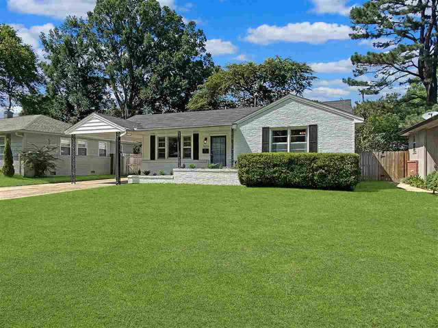5022 Sequoia Rd, Memphis, TN 38117 (#10085914) :: The Wallace Group - RE/MAX On Point
