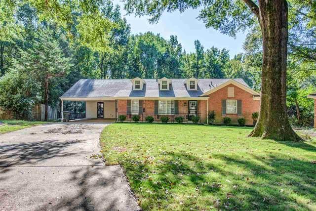 3650 Vanderwood Dr, Memphis, TN 38128 (#10085974) :: The Home Gurus, Keller Williams Realty