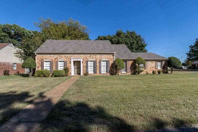 2552 Syon Dr, Memphis, TN 38119 (#10086002) :: The Wallace Group - RE/MAX On Point